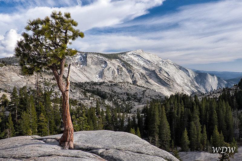Yosemite-5-4-15-219-Edit.jpg